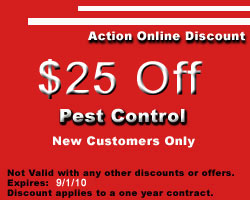 NJ Pest Control Discount